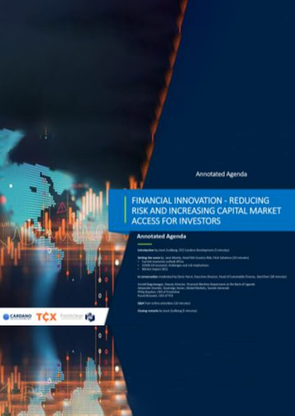 Financial Innovation COVID-19 implications or risks and investors